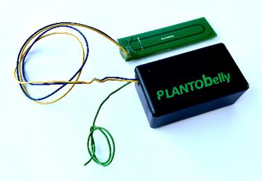 PLANTObelly – Feuchtigkeitsüberwachung via LoRaWAN